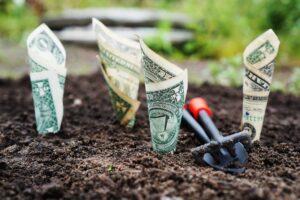 penge_i_jorden_